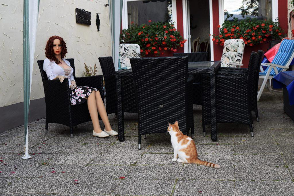 Le chat et la poupée